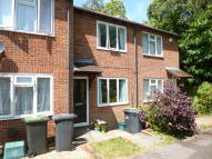 2 bed Terraced house to rent in Woodbury Road...