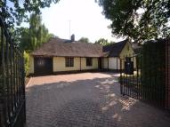 Detached Bungalow to rent in Welshwood Park Road...