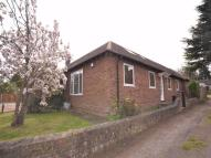 3 bed Semi-Detached Bungalow to rent in Acland Avenue...