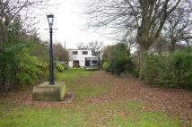Birchwood Road property