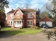 4 bedroom Detached home in Ipswich