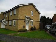 3 bed semi detached home in Parkeston Road...