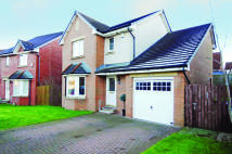 Detached property in 11 Cortmalaw Crescent...