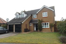 Detached house to rent in Arlington Way, Thetford...