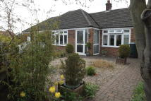 3 bedroom Detached Bungalow in Autumn Close, Thetford...