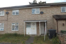 Terraced house in Fir Road, Thetford...