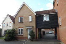property to rent in Cuthbert Close, Thetford, IP24 2UE