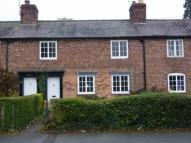 Wrexham Road Terraced house to rent