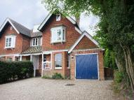 3 bedroom semi detached property to rent in Burwash road, Burwash...