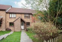 Terraced house to rent in Lime Way, Heathfield...