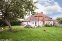 semi detached property to rent in Grove Hill, Hellingly...