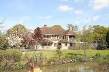 4 bed Detached property to rent in Elenors Grove, Fishbourne