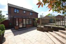 3 bedroom semi detached property to rent in Mary Rose Ave, Wootton