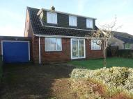 Detached property to rent in Newport Road, Godshill