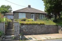 Bungalow to rent in Newport Road, Whitwell