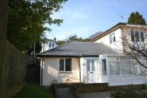 Victoria Avenue Bungalow to rent