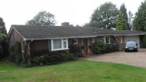 house to rent in Sands Lane, Elloughton,