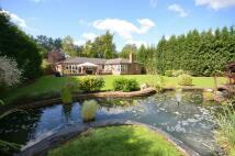 South Godstone Detached Bungalow for sale