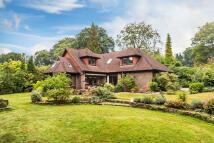 4 bed Detached house for sale in Dormans Park, West Sussex