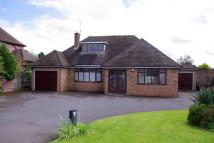 Detached Bungalow in Bromsgrove Road...