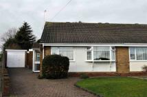 Semi-Detached Bungalow in Cherry Tree Lane...