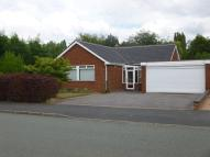 Detached Bungalow to rent in Jevons Road...