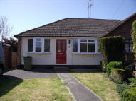 Semi-Detached Bungalow to rent in Mons Avenue, Billericay...