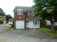 Detached property to rent in The Rowans, Billericay...