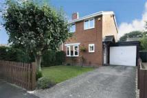 semi detached house to rent in 3, Sycamore Close...