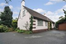 3 bed Detached Bungalow for sale in Avalon, Chirk Road...