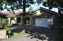 4 bedroom Detached Bungalow for sale in Manor Way, Failand...