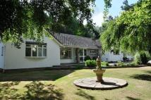 4 bed Bungalow in Brockley Lane, Brockley...