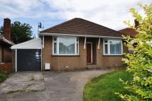 Bungalow to rent in Bishops Road, Cleeve