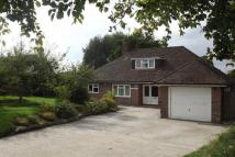 Detached Bungalow to rent in Stonegate