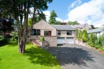 4 bedroom Detached Bungalow for sale in Coreglia, Brigsteer Road...