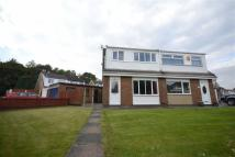 3 bedroom semi detached house to rent in Stratton Drive, Wigan...