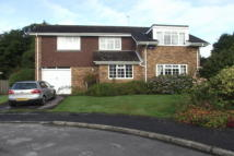 Detached property to rent in Swift Close Crowborough