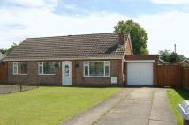 3 bed Detached Bungalow for sale in McKenzie Place...