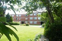 2 bed Flat to rent in Rayleigh Road...
