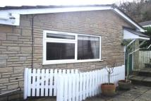 Charmouth house to rent