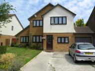 6 bedroom property to rent in 6 bedroom property in...