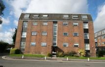 2 bed Apartment in Petersfield
