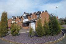 4 bed Detached property for sale in Overwood Place, Packmoor...