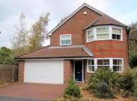 4 bedroom Detached house to rent in Catisfield Road, Fareham