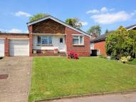 Detached Bungalow for sale in Peters Close