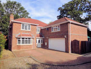 Detached home for sale in Strawberry Hill...