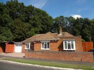 Detached Bungalow to rent in Longwood Avenue...