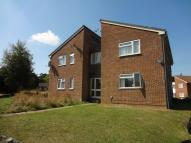 Studio apartment to rent in Reedmace Close...