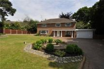 St Davids Lane Detached house for sale