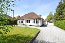 Dunstan Lane Bungalow for sale